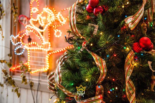 عکاسی از درخت کریسمس