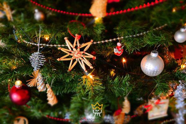 گرفتن عکس از ریسه های درخت کریسمس