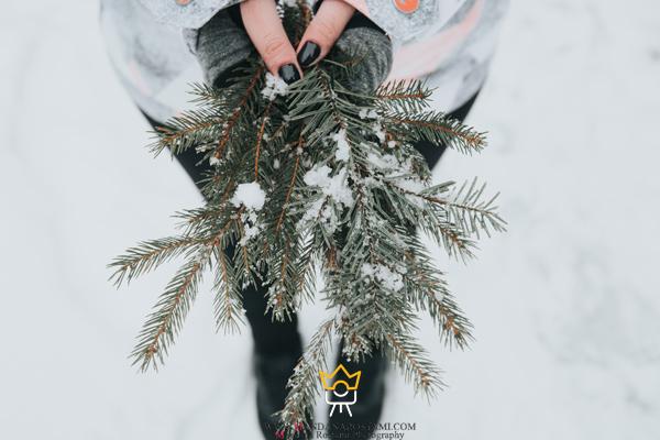 خلاقیت در عکس زمستانی