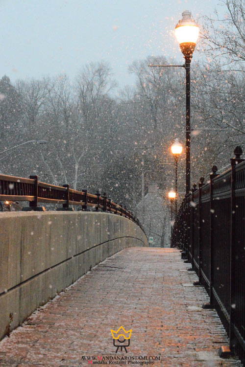 عکس زمستانی
