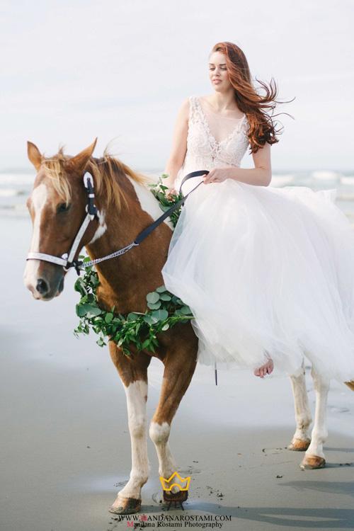 عروس و داماد با حیوانات خانگی